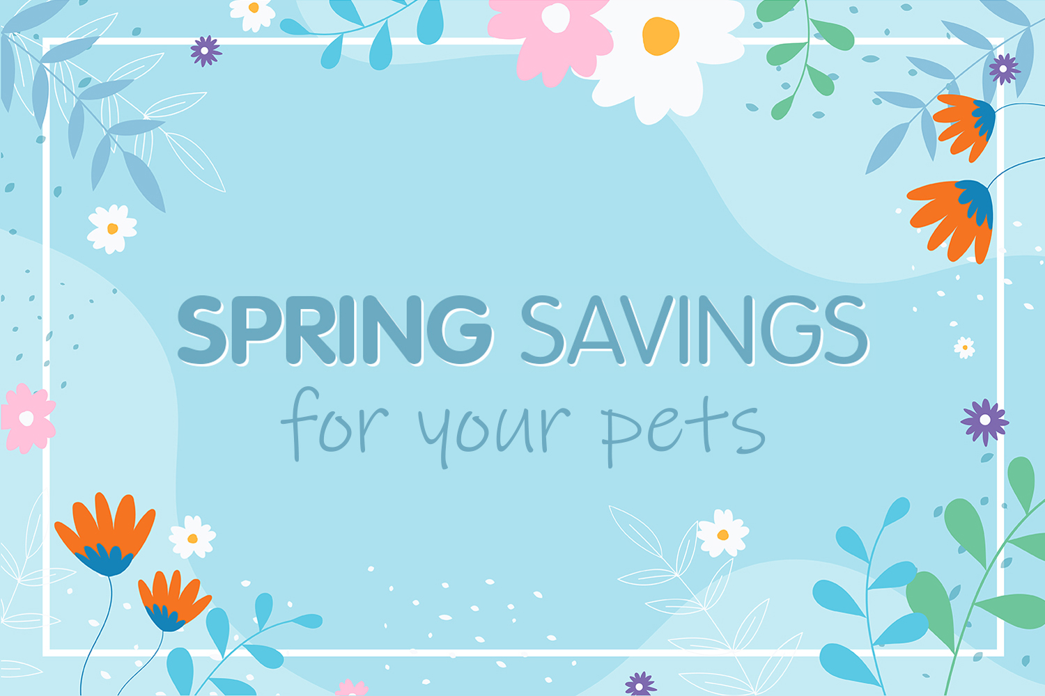 Treat your furry friends...